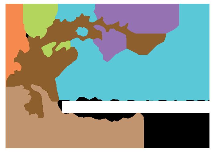 AEDI Foundation